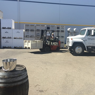 The fruit arrives at the winery